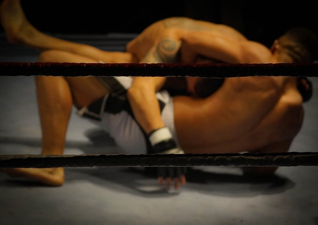 http://www.ufcguiden.se/wp-content/uploads/sites/287/2018/08/UFC.jpg